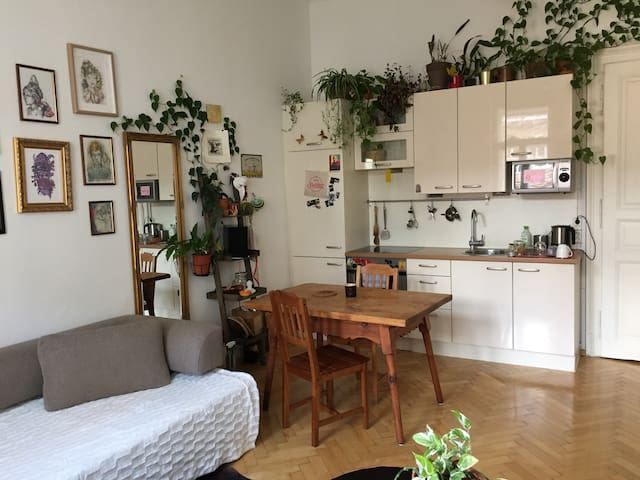 Warm and green apartment in the center of Graz