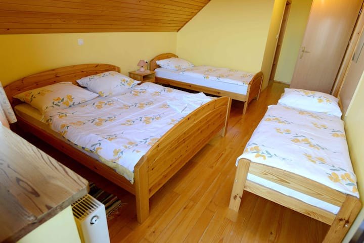 Guest House Koprivnik - Apartment 4