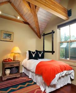 Historic Cabin at 300 W Main St. - Aspen