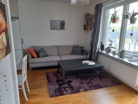 Central open plan apartment