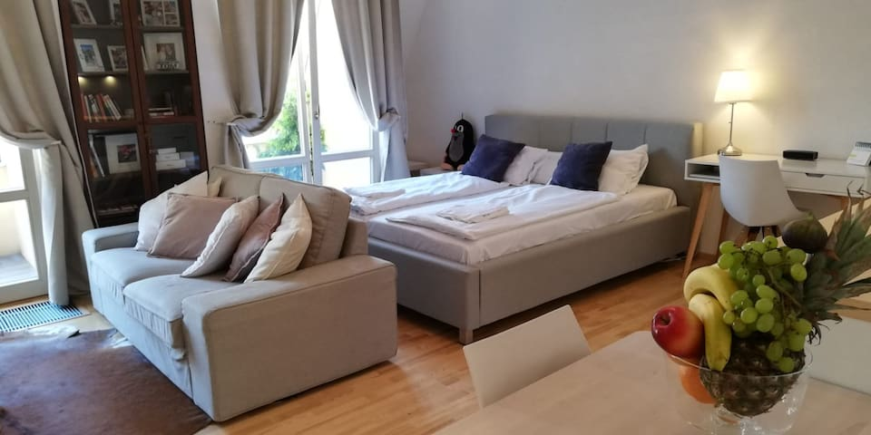 Cozy apartment 10min from the heart of Prague