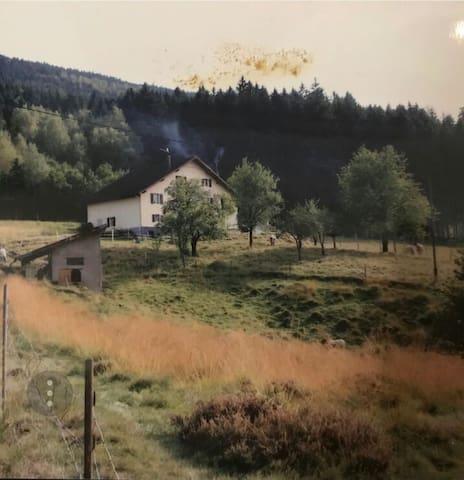 la ferme des pélicans