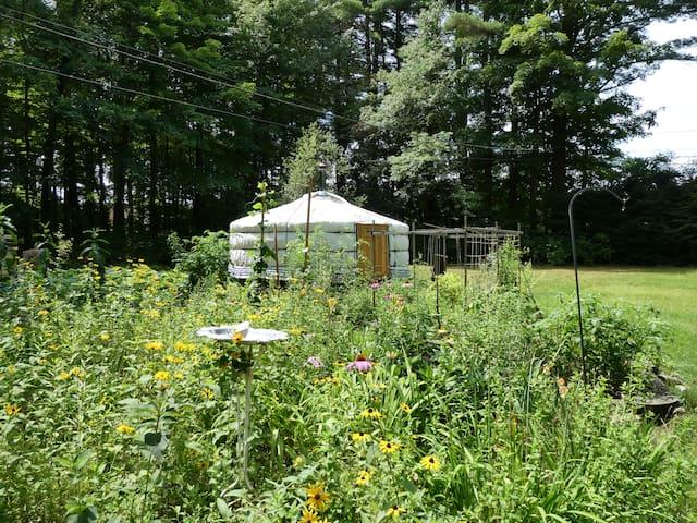 Eco Mongolian yurt in the Berkshires