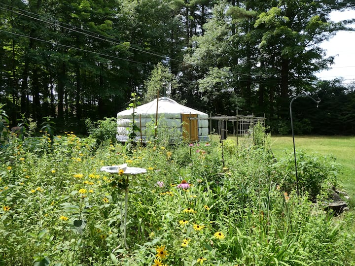 Eco Mongolian yurt in the Berkshires