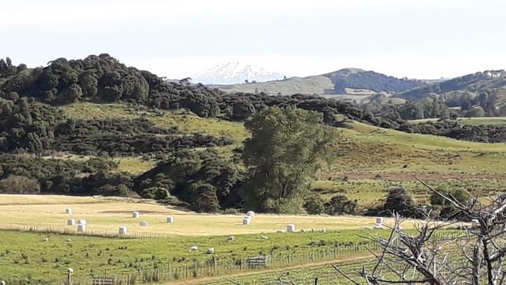 The sheep's retreat farmstay