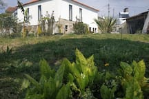 house / field and beach / Viana do Castelo