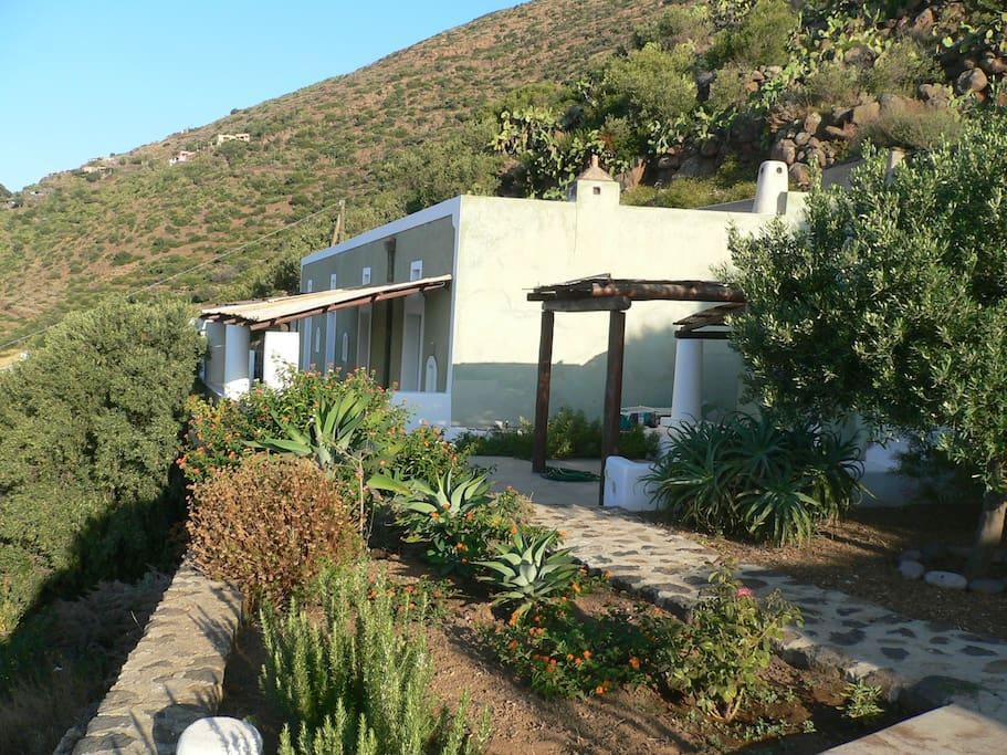 La casa verde dal giardino