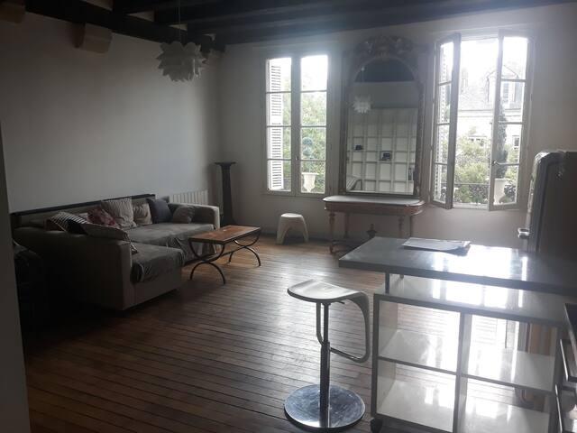 Vieux Tours, appartement de charme