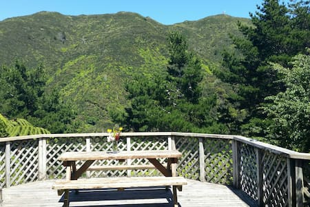 Spacious, Sunny, Mountain Views & FREE PARKING! - karori  - Apartemen
