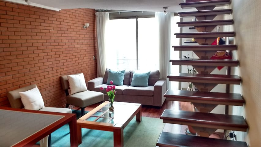Beautiful Loft 2 floors | Santiago Down town - Santiago - Loft