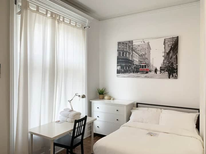 Entire Beautiful Downtown Apartment