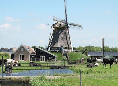 Logeren bij de Molen - Alphen aan den Rijn - Dům