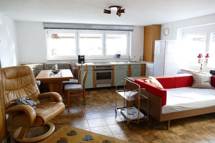 Komfortable 2-Zi-Ferienwohnung Albbruck - Albbruck - Apartamento