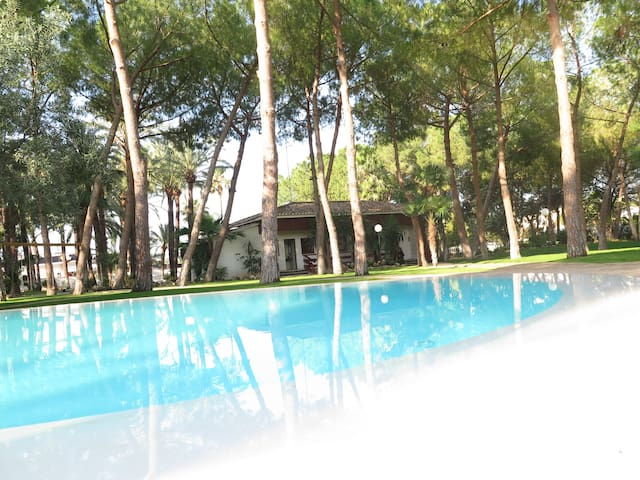 Villa (6p), beautiful garden,10 km from Valencia