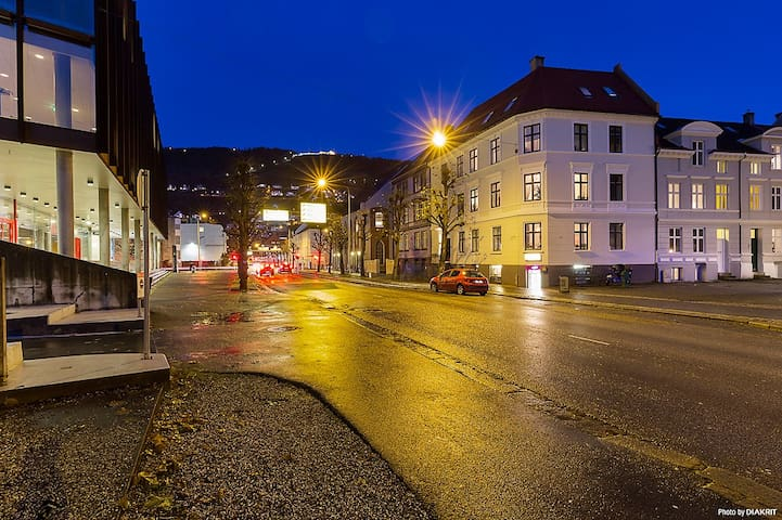 City Center Bergen New 1BD/4ppl