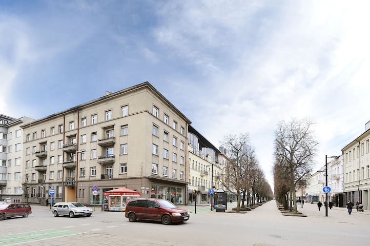 Kaunas City Center Best Apartment