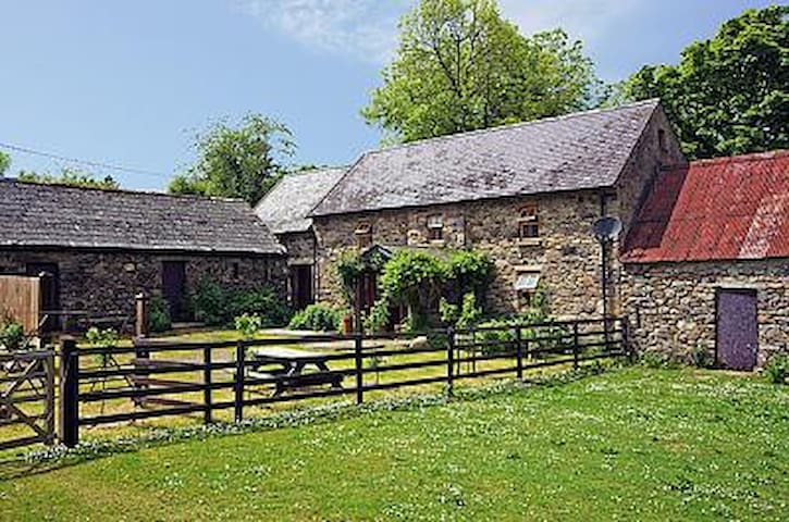 Beautiful Restored Stone Farm Cottage - Ballymagill - Cabaña