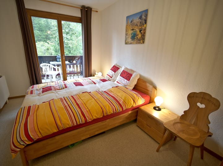 Private Room & Bathroom in the mountains (Morgins)