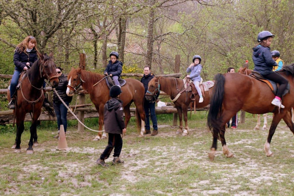 Paseos a caballo,monta natural.