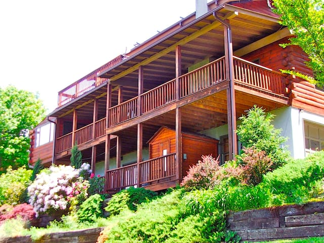 Avondale Ridge - 6 BR 3 full BA near DT AVL, views