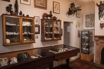 Museum - Marine Room