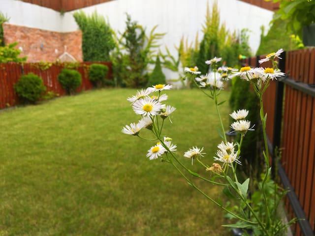 Comfortable apartment with garden