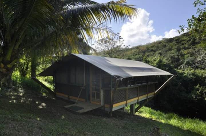Saman Nature Lodge | Mount Victory Camp