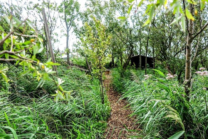 De Wilde avontuurlijke tuin van de Dankbaarhe3d