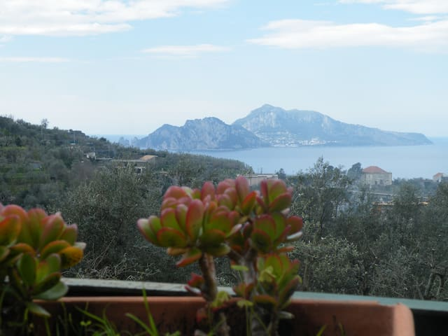 Small apartment with view of Capri - Massa Lubrense - Apartamento