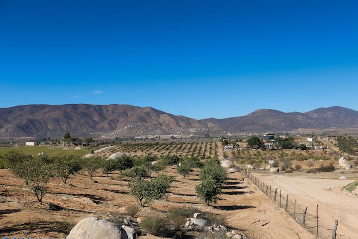 "Finca Webb ""Casa Tempranillo"" our newest addition."