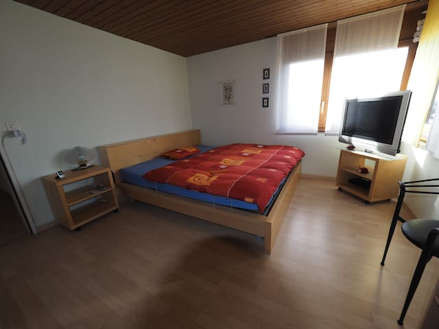 nice and bright room in the middle of switzerland