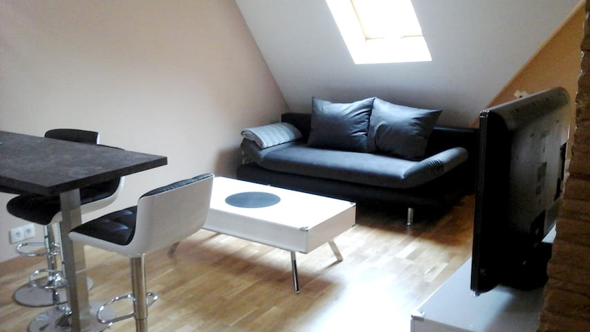 Nice apt in Auxonne & Wifi