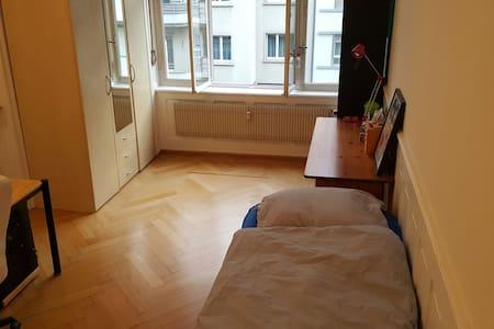 Big room in a cozy apartment - Basel - Apartemen