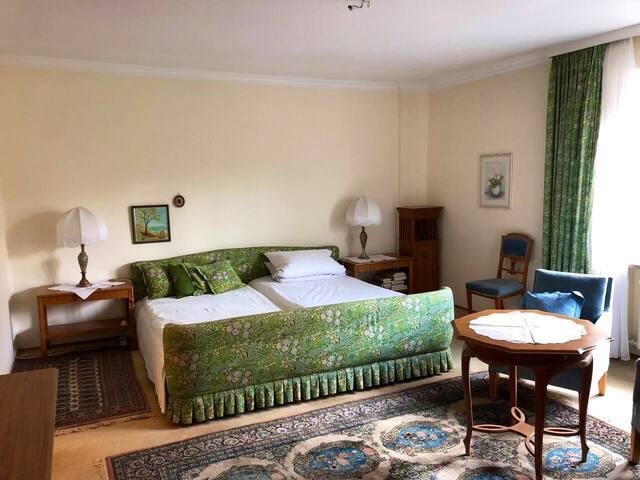 Schlafzimmer grün in Altbauwohnung zentral