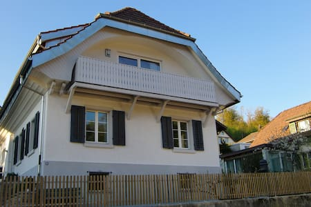 Studio with garden sitting area - Zofingen - Rumah