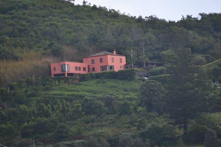 Pico  do  Cavaco - RRAL Nº 127 - Rabo de Peixe