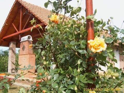 Kardoskút Vörös Kakas Vendégház