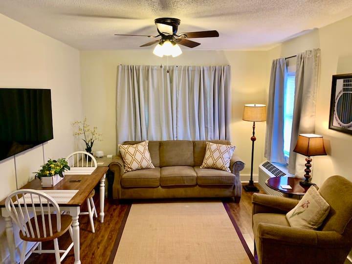Comfortable & Clean 2-Bedroom Apartment in Midtown