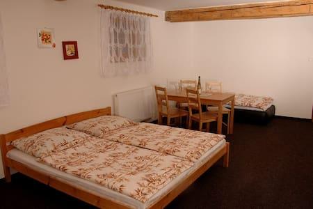 4-lůžkový pokoj č. 9 v penzionu Daniela 32 m2