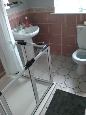 Walk in shower and handrails