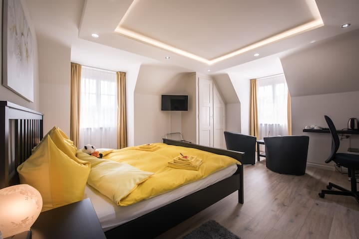 Superior Kingsize Room - Max Aviation Villa - ベルン (Bern) - 別荘