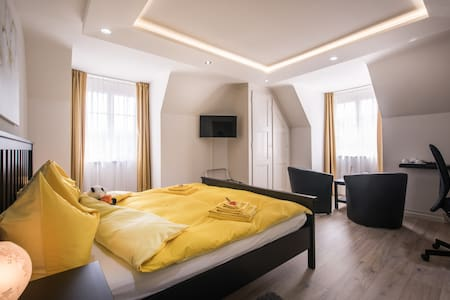 Superior Kingsize Room - Max Aviation Villa - Bern