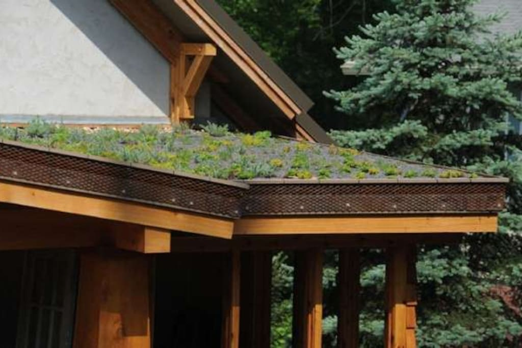 Living roof over front proch.