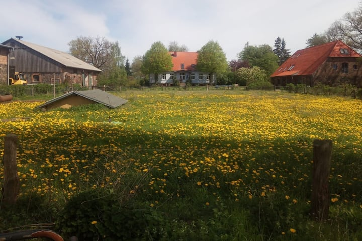 Bauernhof Kirchengut Strellin