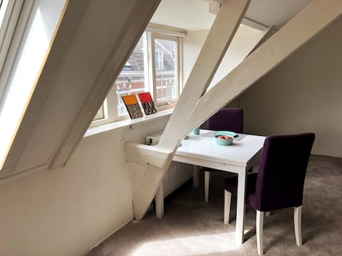 Sunny private room near Central Station Utrecht