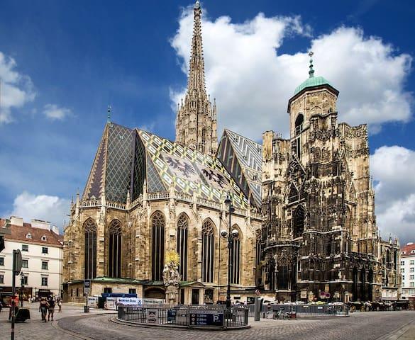 Hidden jewel in Vienna's historic city center