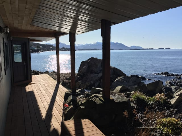 Oceanfront! Otter's Den Coastal Retreat