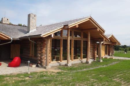 Camp66 - Ściegny