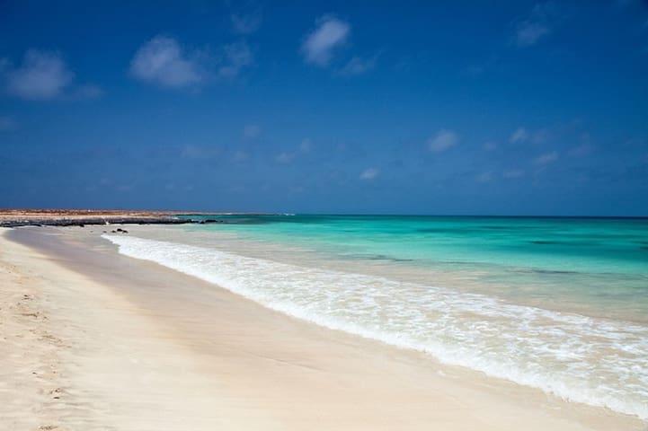 Delizioso monolocale a soli 200 mt dalla spiaggia! - Santa Maria - Apartmen