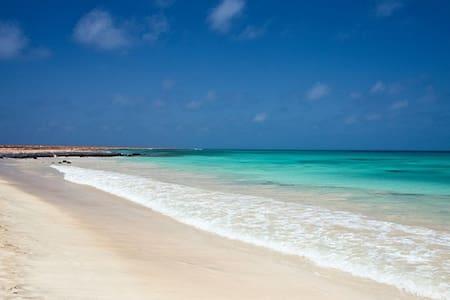 Delizioso monolocale a soli 200 mt dalla spiaggia! - 聖馬麗亞(Santa Maria)